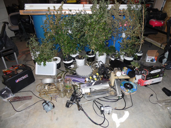 Marijuana Grow Operation Discovered on Pointe Lane